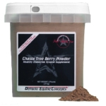 Chaste-Tree-Berry-Powder