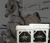 Lysine for horses | DEC blog