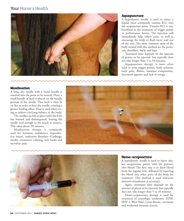 Acupunture_page3